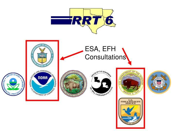 ESA, EFH Consultations