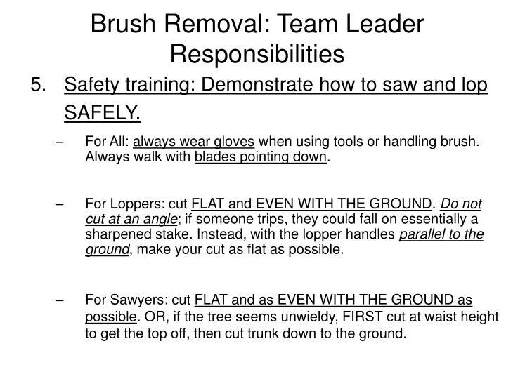 Brush Removal: Team Leader Responsibilities
