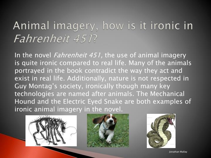 animal imagery examples