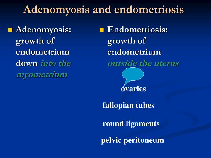 Adenomyosis: growth of endometrium down