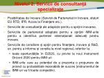 nivelul 2 servicii de consultan specializate