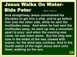 jesus walks on water bids peter matt 14 22 31