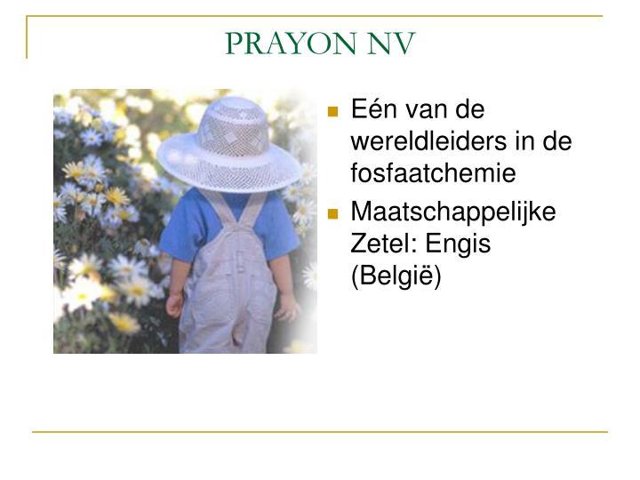 Prayon nv