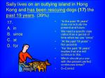 sally lives on an outlying island in hong kong and has been rescuing dogs 17 the past 19 years 39