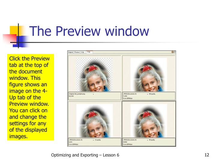 The Preview window