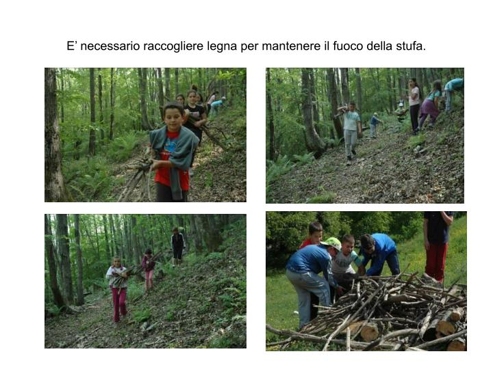 E' necessario raccogliere legna per mantenere il fuoco della stufa.