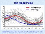 the flood pulse