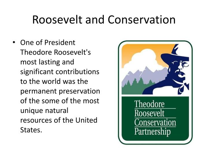 president theodore roosevelt and the conservation of wildlife Roosevelt's presidency marked a turning point for the nation's wilderness and wildlife roosevelt had fought theodore roosevelt conservation president.