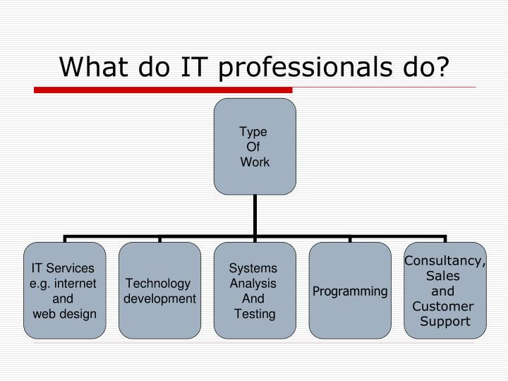 What do IT professionals do?