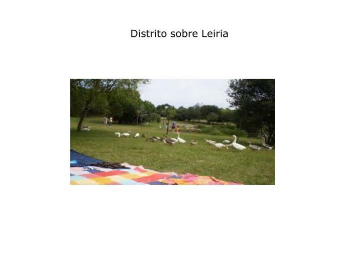 Distrito sobre leiria1