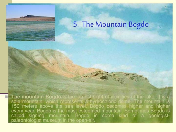 5.  The Mountain Bogdo