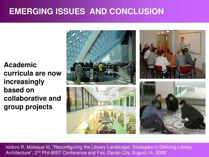 EMERGING ISSUES  AND CONCLUSION
