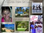 pictures from sri lanka