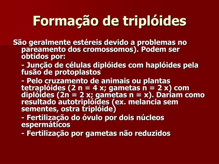 Formação de triplóides