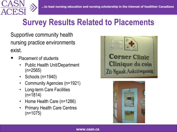 Survey Results Related to Placements