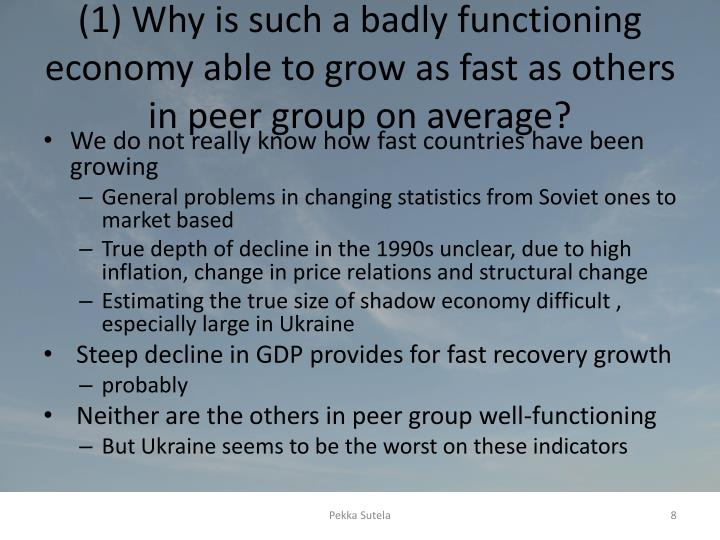 (1) Why is such a badly functioning economy able to grow as fast as others in peer group on average?