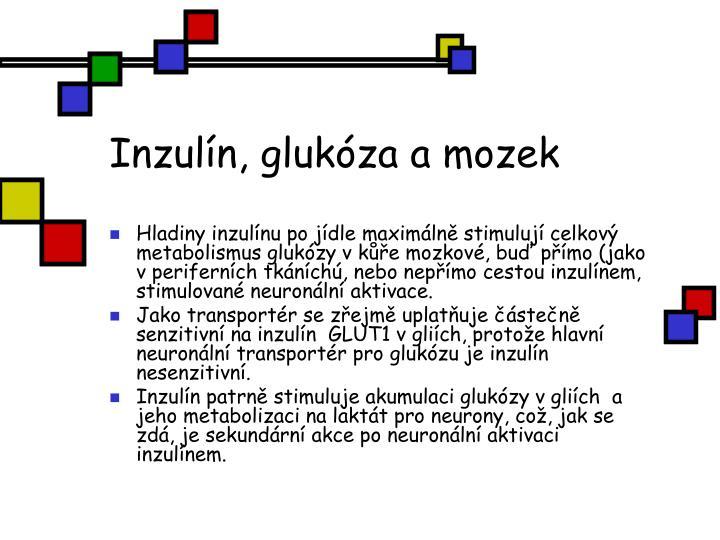 Inzulín, glukóza a mozek