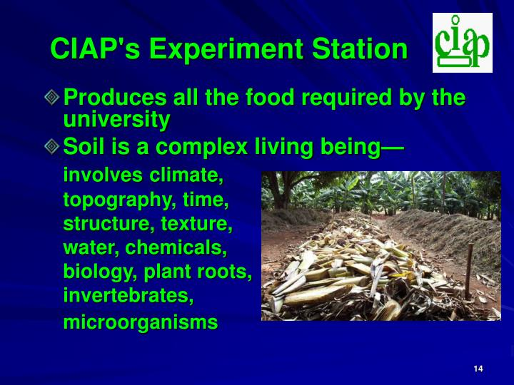CIAP's Experiment Station