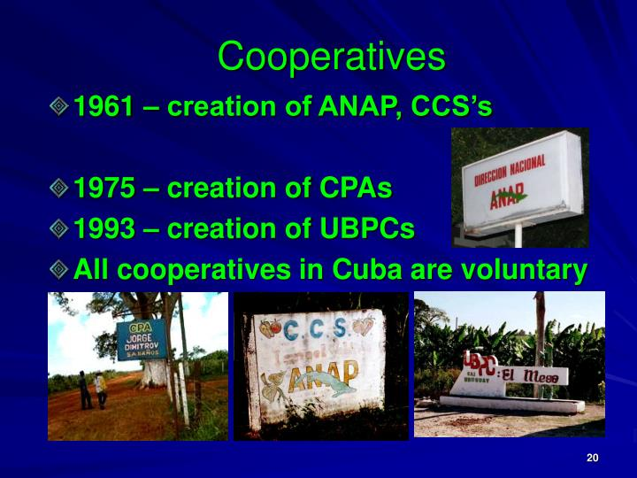 Cooperatives