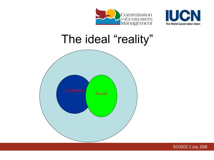 """The ideal """"reality"""""""