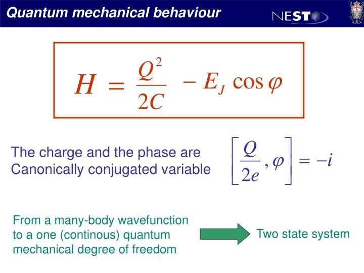 Quantum mechanical behaviour