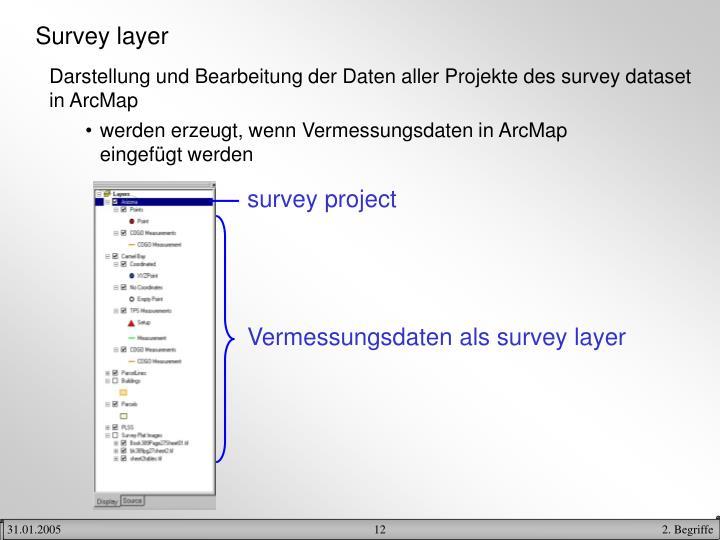 Survey layer