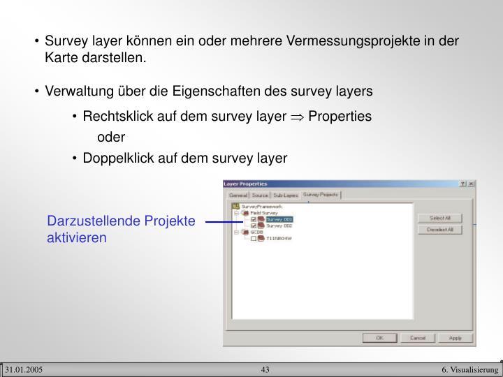 Survey layer können ein oder mehrere Vermessungsprojekte in der Karte darstellen.