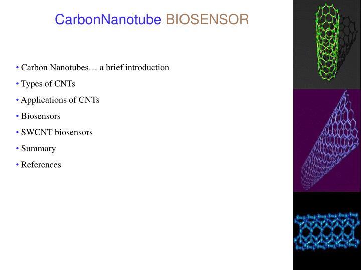 CarbonNanotube