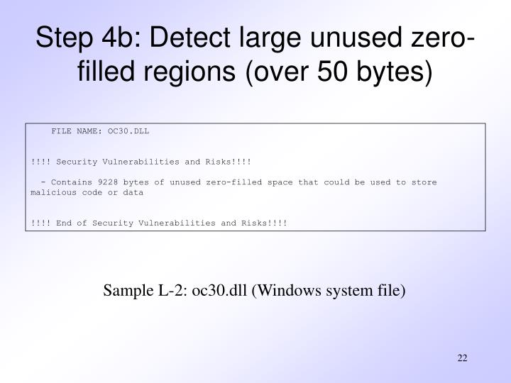 Step 4b: Detect large unused zero-filled regions (over 50 bytes)