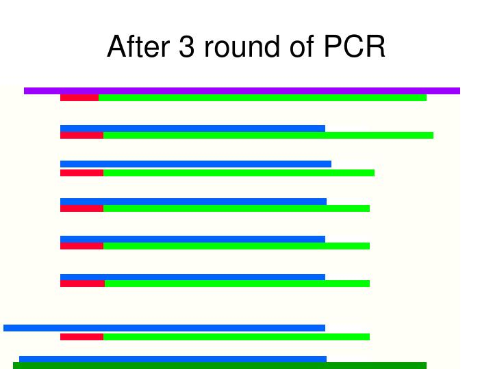 After 3 round of PCR