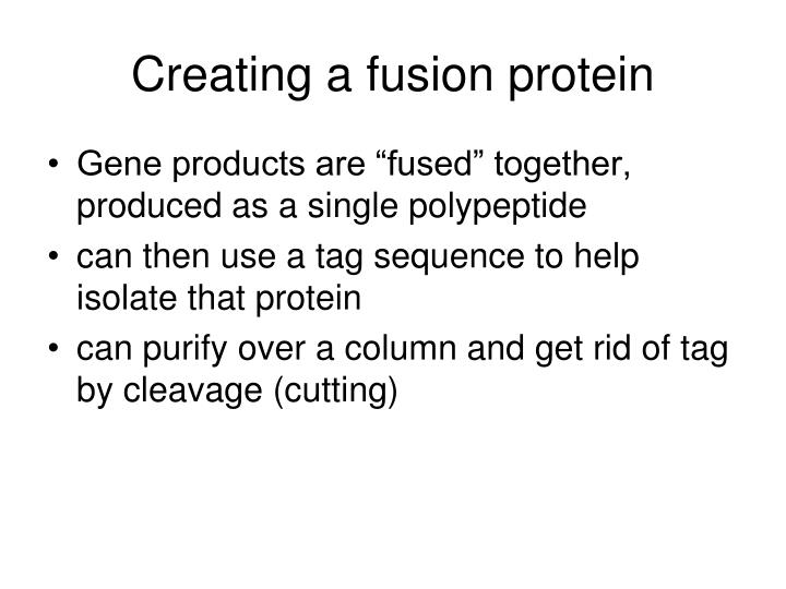 Creating a fusion protein
