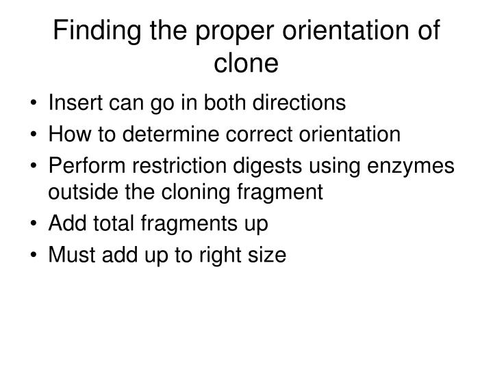 Finding the proper orientation of clone