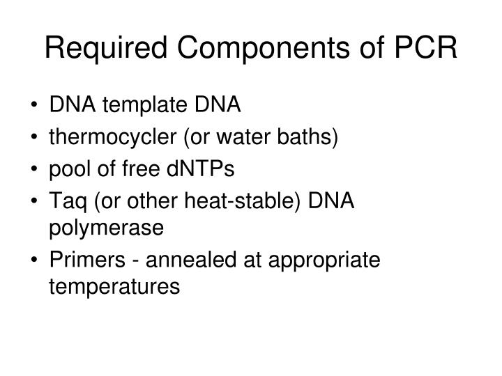 Required Components of PCR