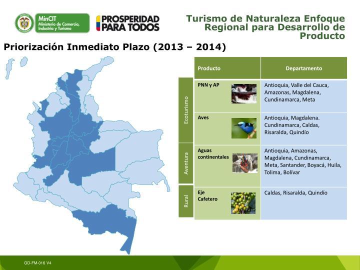 Priorización Inmediato Plazo (2013 – 2014)
