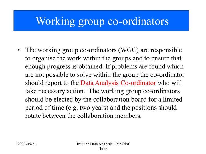 Working group co-ordinators