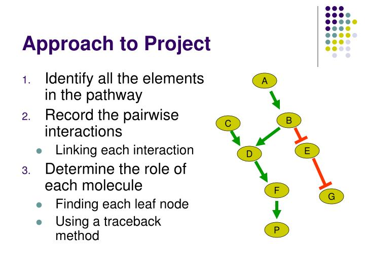 Approach to Project