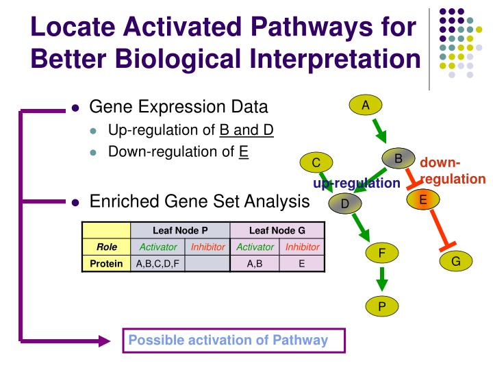 Locate Activated Pathways for Better Biological Interpretation
