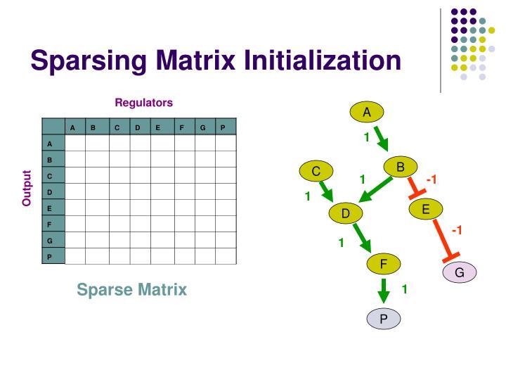 Sparsing Matrix Initialization