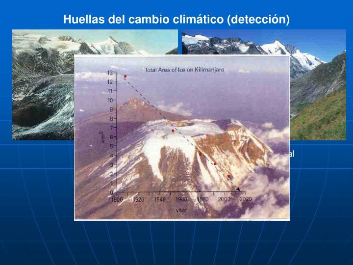 Huellas del cambio climático (detección)