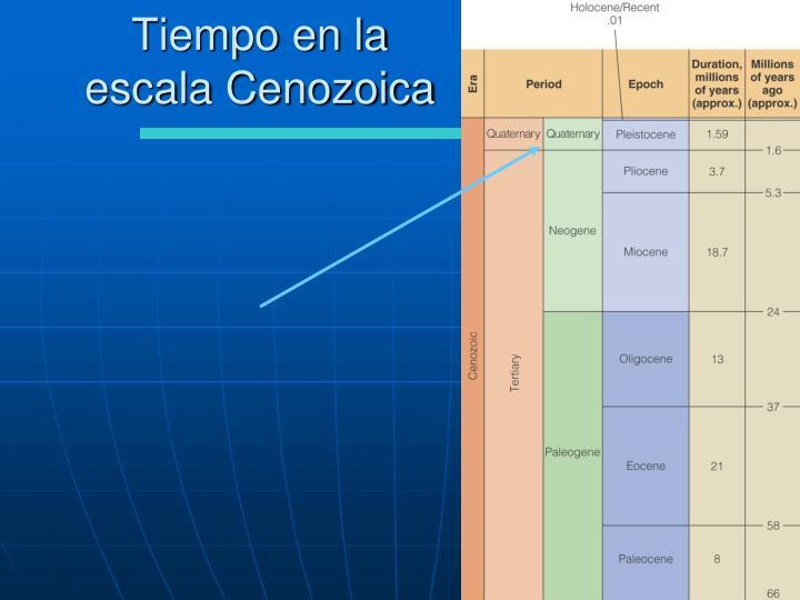 Tiempo en la escala cenozoica