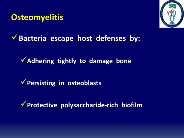 osteomyelitis essay Acute osteomyelitis exists as a refractory disease even now, which usually exhibits systemic symptoms such as fever or malaise and local redness or swelling the present paper describes a case of acute osteomyelitis of the mandible that was rapidly progressing without typical symptoms.