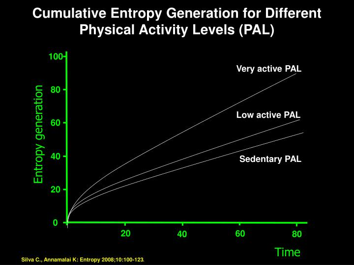 Cumulative Entropy Generation for Different Physical Activity Levels (PAL)