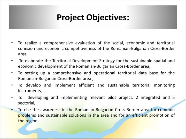 Project Objectives: