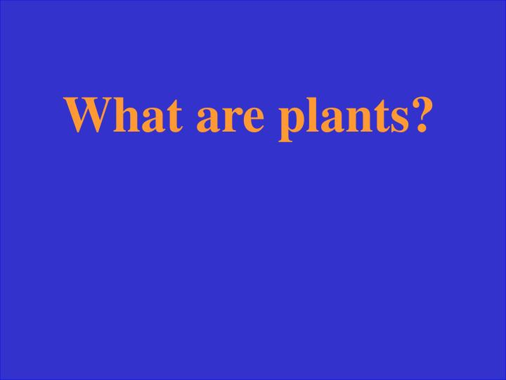 What are plants?