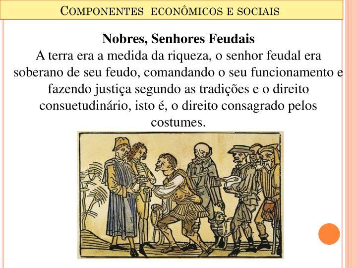 Componentes  econômicos e sociais
