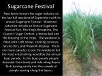 sugarcane festival