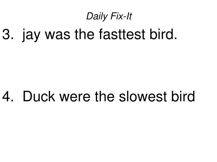 Daily fix it 3 jay was the fasttest bird 4 duck were the slowest bird