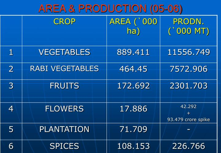 Area production 05 06