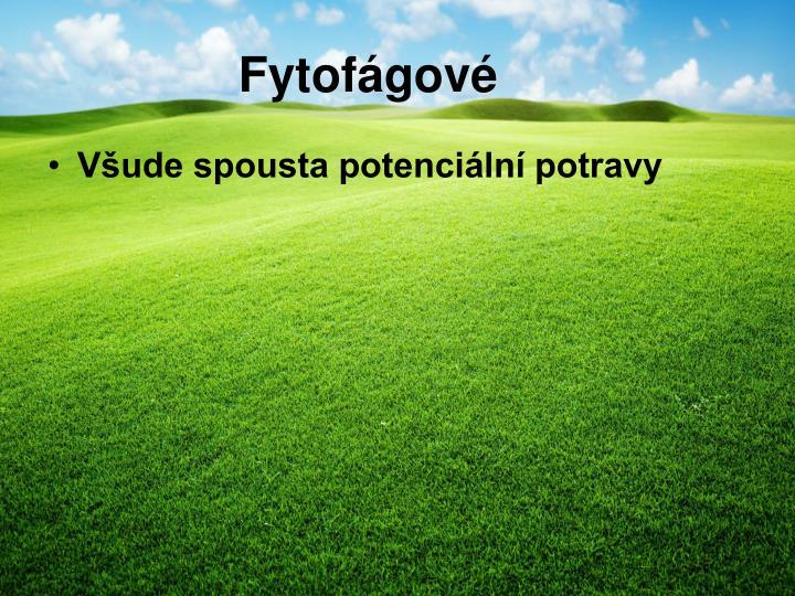 Fytofágové