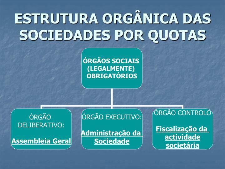 Estrutura org nica das sociedades por quotas